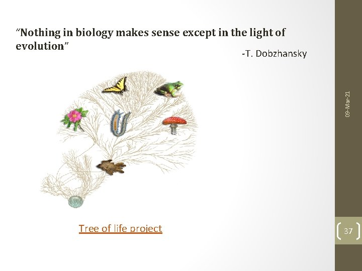 """09 -Mar-21 """"Nothing in biology makes sense except in the light of evolution"""" -T."""