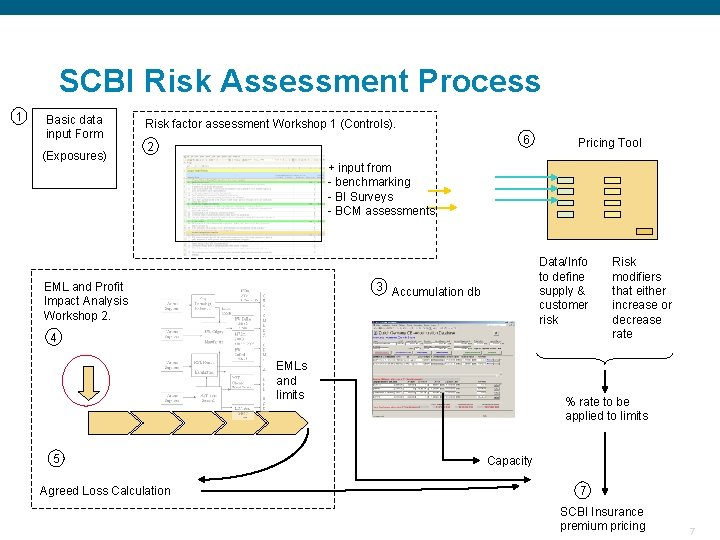 SCBI Risk Assessment Process 1 Basic data input Form (Exposures) Risk factor assessment Workshop