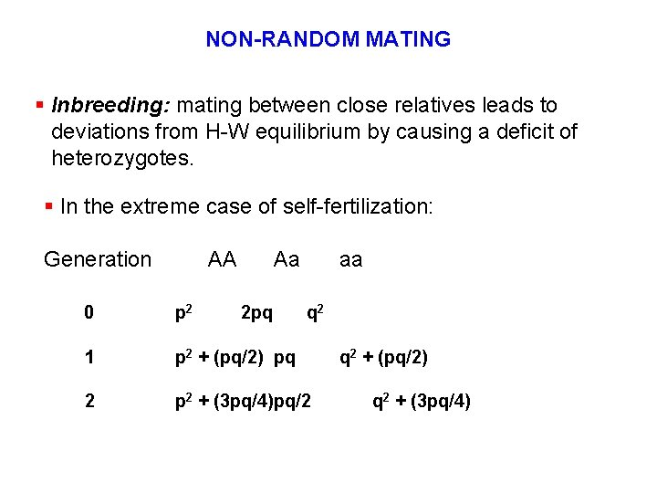 NON-RANDOM MATING § Inbreeding: mating between close relatives leads to deviations from H-W equilibrium