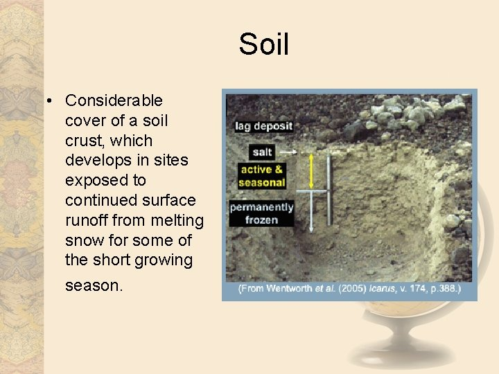 Soil • Considerable cover of a soil crust, which develops in sites exposed to