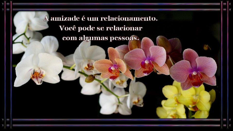 A amizade é um relacionamento. Você pode se relacionar com algumas pessoas.