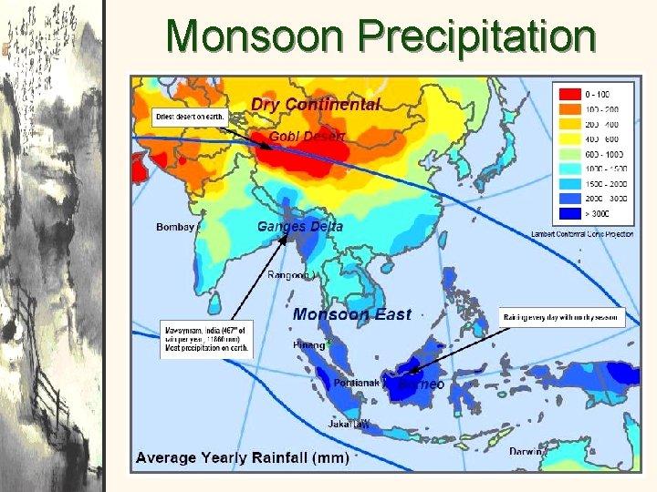 Monsoon Precipitation Patterns