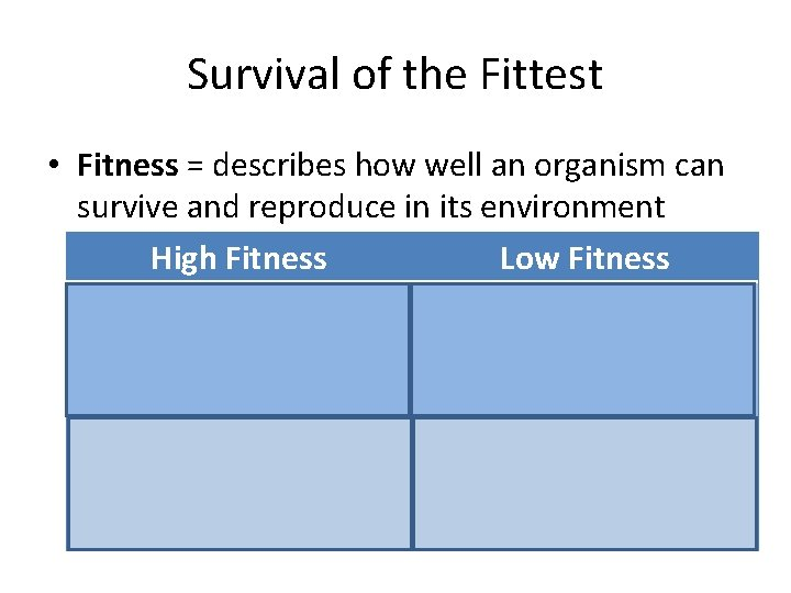 Survival of the Fittest • Fitness = describes how well an organism can survive