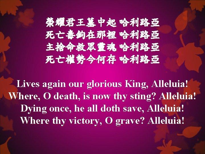 榮耀君王墓中起 哈利路亞 死亡毒鉤在那裡 哈利路亞 主捨命救眾靈魂 哈利路亞 死亡權勢今何存 哈利路亞 Lives again our glorious King, Alleluia!