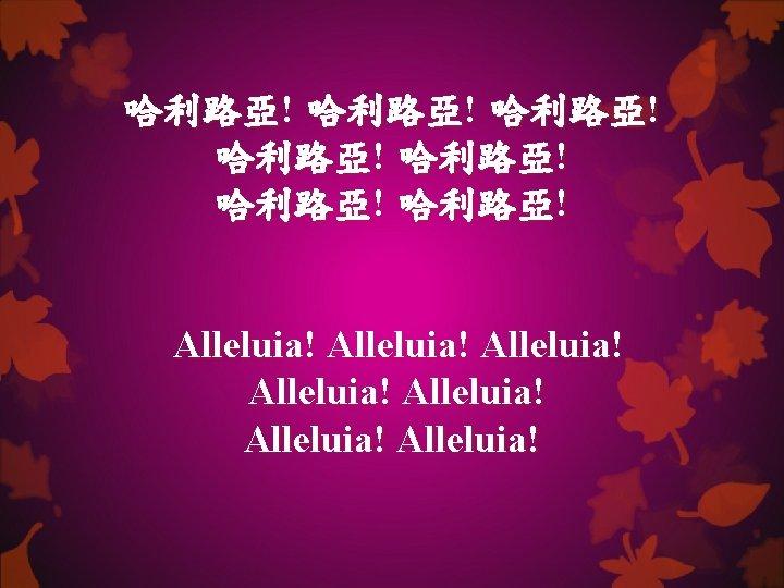 哈利路亞! 哈利路亞! Alleluia! Alleluia!