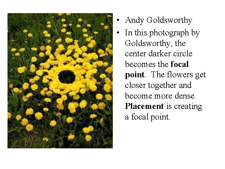 • Andy Goldsworthy • In this photograph by Goldsworthy, the center darker circle