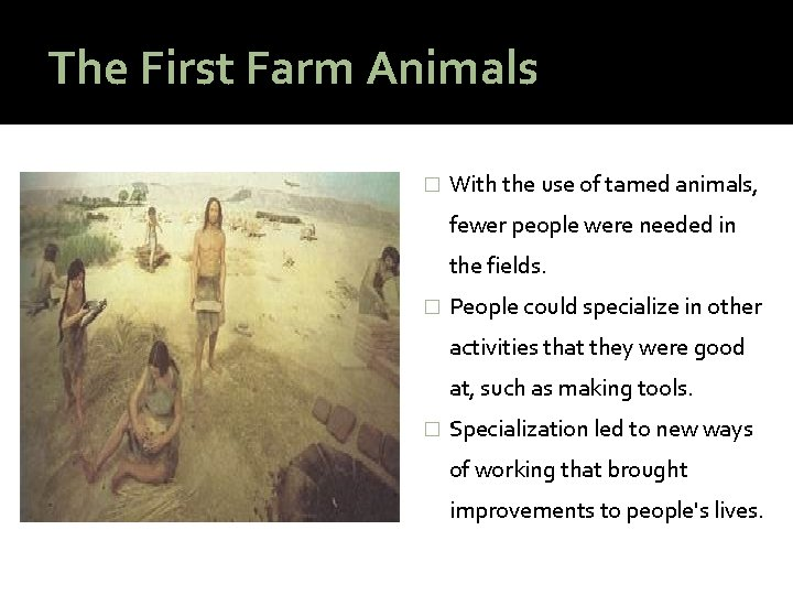 The First Farm Animals � With the use of tamed animals, fewer people were