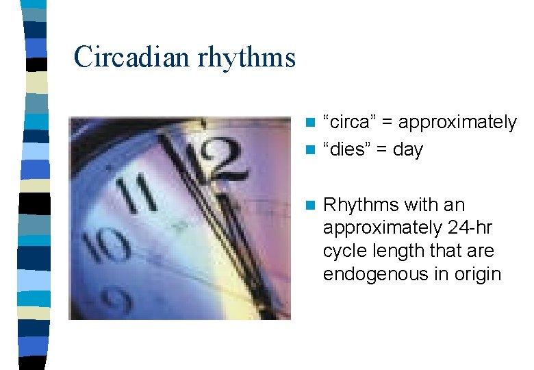 """Circadian rhythms """"circa"""" = approximately n """"dies"""" = day n n Rhythms with an"""