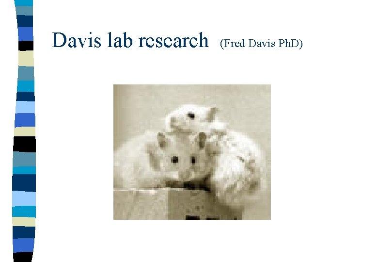 Davis lab research (Fred Davis Ph. D)