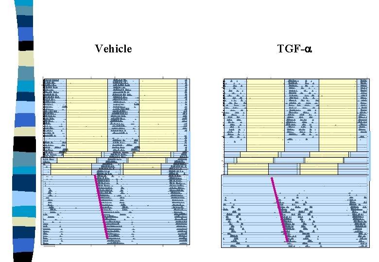 Vehicle TGF-a