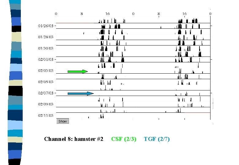 Channel 8: hamster #2 CSF (2/3) TGF (2/7)