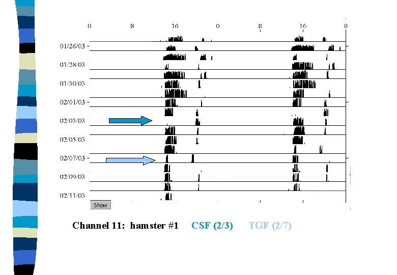 Channel 11: hamster #1 CSF (2/3) TGF (2/7)