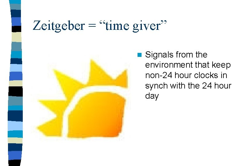 """Zeitgeber = """"time giver"""" n Signals from the environment that keep non-24 hour clocks"""