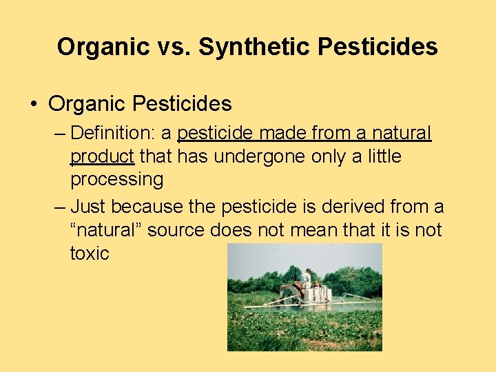 Organic vs. Synthetic Pesticides • Organic Pesticides – Definition: a pesticide made from a