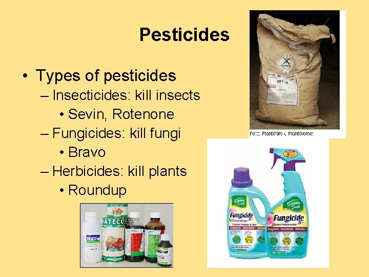 Pesticides • Types of pesticides – Insecticides: kill insects • Sevin, Rotenone – Fungicides: