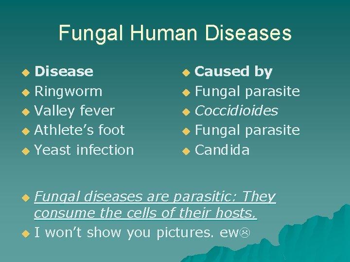 Fungal Human Diseases Disease u Ringworm u Valley fever u Athlete's foot u Yeast