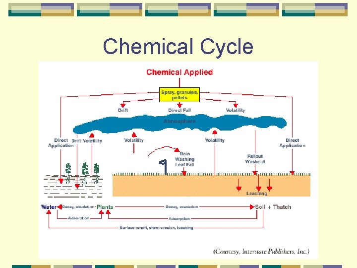 Chemical Cycle