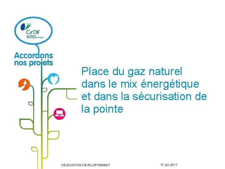 Place du gaz naturel dans le mix énergétique et dans la sécurisation de la