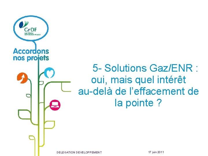 5 - Solutions Gaz/ENR : oui, mais quel intérêt au-delà de l'effacement de