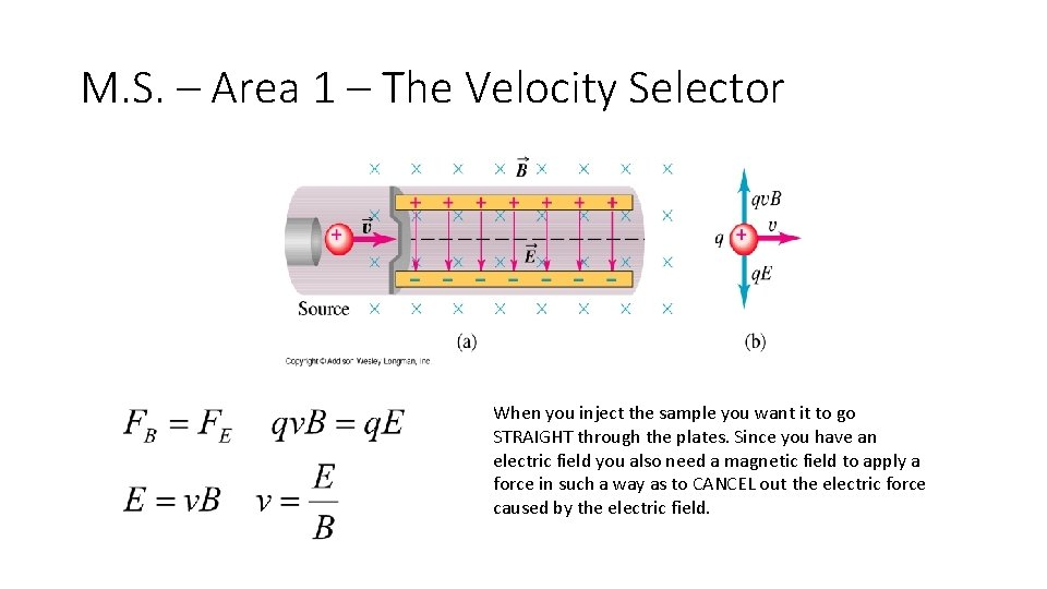 M. S. – Area 1 – The Velocity Selector When you inject the sample