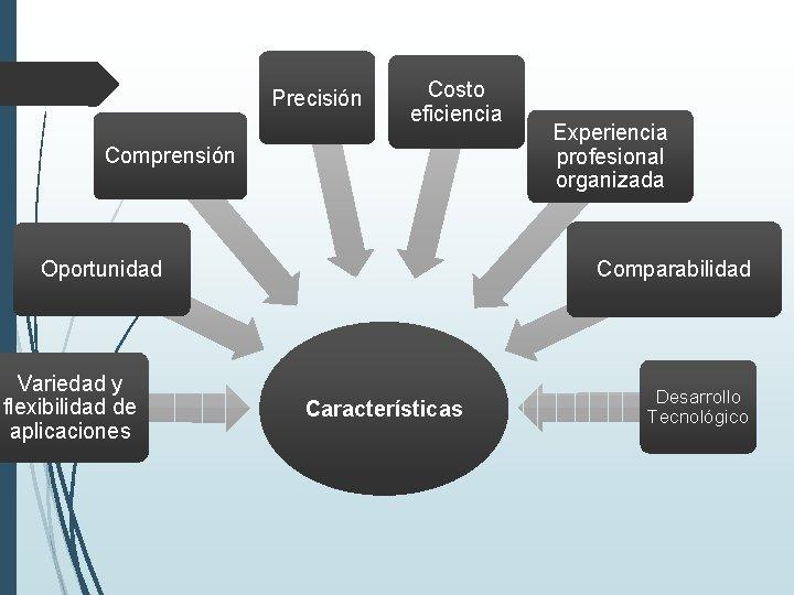 Precisión Costo eficiencia Comprensión Comparabilidad Oportunidad Variedad y flexibilidad de aplicaciones Experiencia profesional organizada