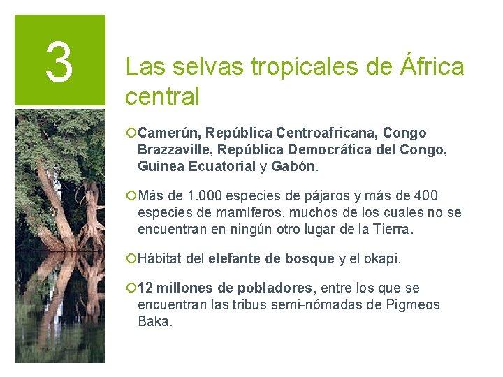 3 Las selvas tropicales de África central ¡Camerún, República Centroafricana, Congo Brazzaville, República Democrática