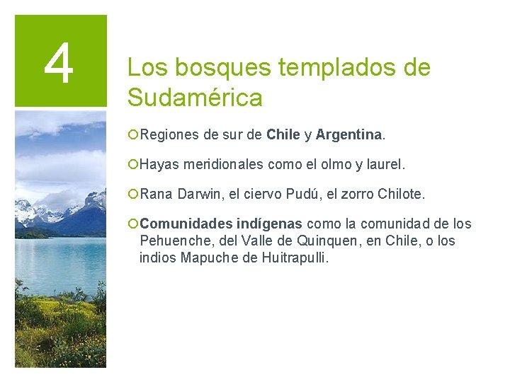 4 Los bosques templados de Sudamérica ¡Regiones de sur de Chile y Argentina. ¡Hayas