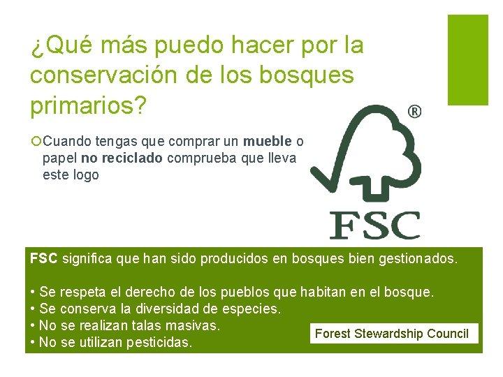 ¿Qué más puedo hacer por la conservación de los bosques primarios? ¡Cuando tengas que