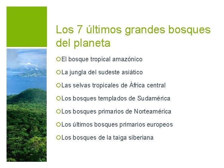 Los 7 últimos grandes bosques del planeta ¡El bosque tropical amazónico ¡La jungla del