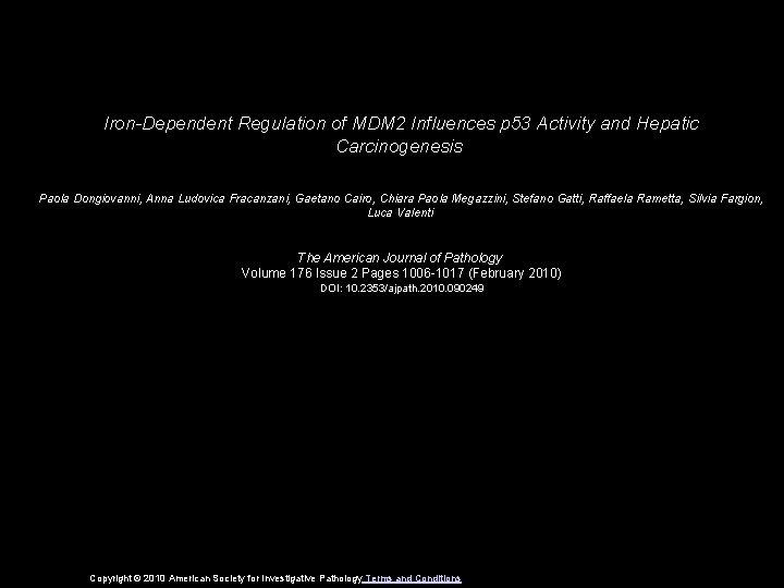 Iron-Dependent Regulation of MDM 2 Influences p 53 Activity and Hepatic Carcinogenesis Paola Dongiovanni,