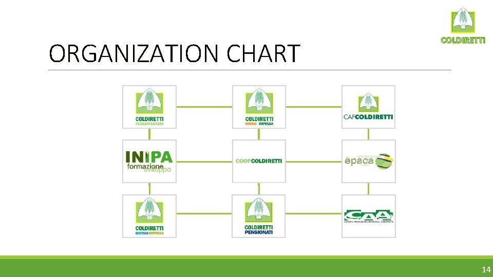 ORGANIZATION CHART COLDIRETTI 14