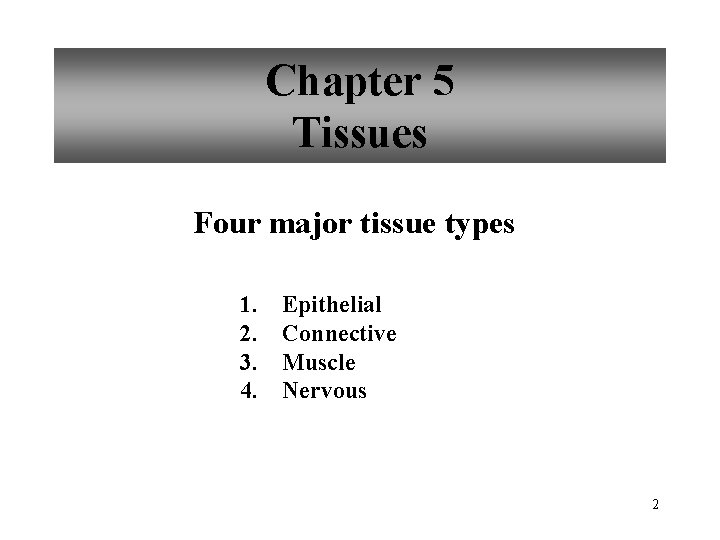 Chapter 5 Tissues Four major tissue types 1. 2. 3. 4. Epithelial Connective Muscle