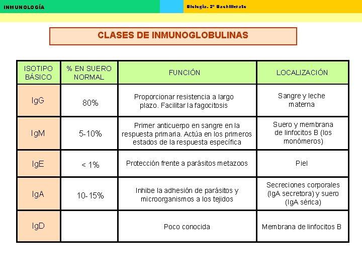 Biología. 2º Bachillerato INMUNOLOGÍA CLASES DE INMUNOGLOBULINAS ISOTIPO BÁSICO Ig. G % EN SUERO