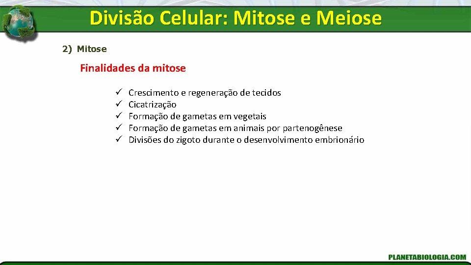 Divisão Celular: Mitose e Meiose 2) Mitose Finalidades da mitose ü ü ü Crescimento