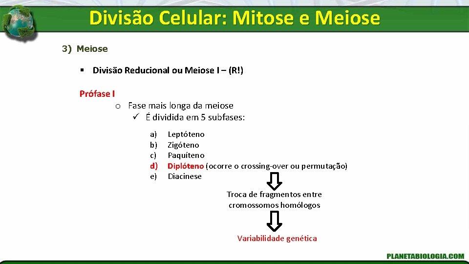Divisão Celular: Mitose e Meiose 3) Meiose § Divisão Reducional ou Meiose I –
