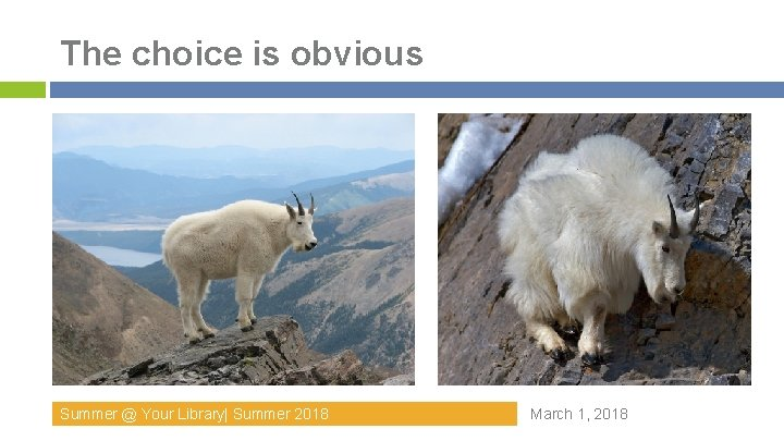 The choice is obvious Summer @ Your Library  Summer 2018 March 1, 2018