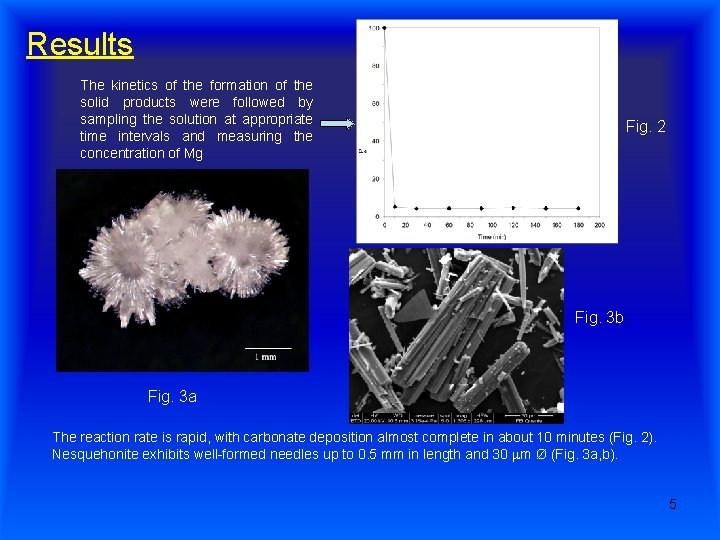 Results The kinetics of the formation of the solid products were followed by sampling