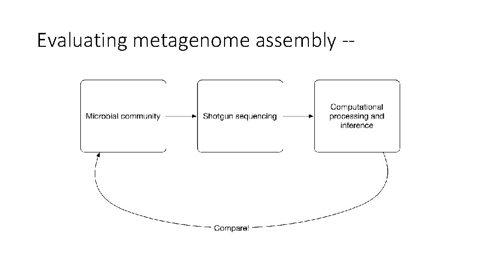 Evaluating metagenome assembly --