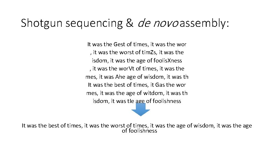 Shotgun sequencing & de novo assembly: It was the Gest of times, it was