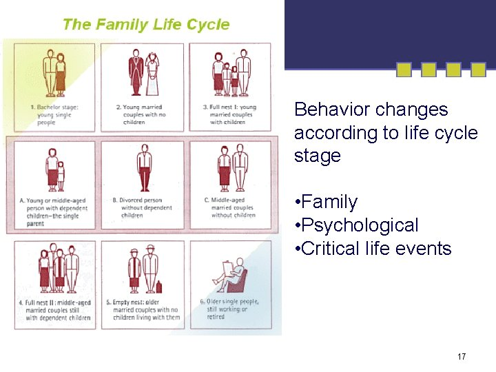 Behavior changes according to life cycle stage • Family • Psychological • Critical life