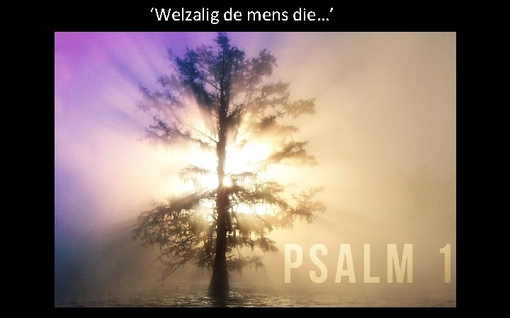 'Welzalig de mens die…'