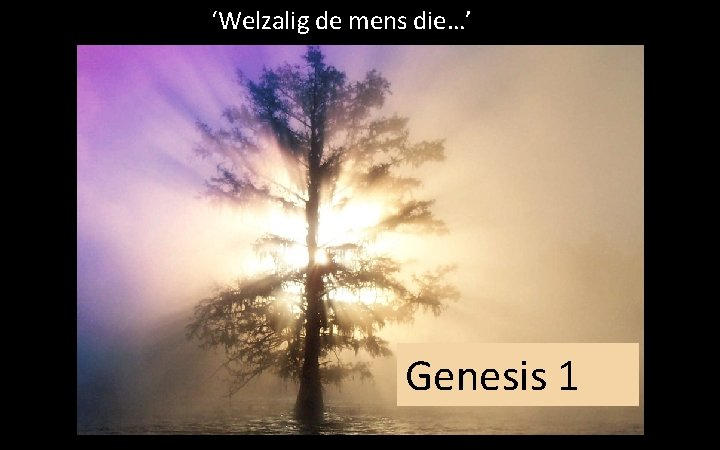 'Welzalig de mens die…' Genesis 1
