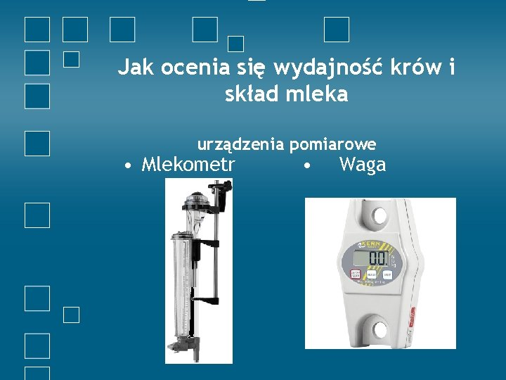 Jak ocenia się wydajność krów i skład mleka urządzenia pomiarowe • Mlekometr • Waga