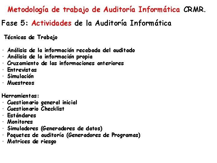Metodología de trabajo de Auditoría Informática CRMR. Fase 5: Actividades de la Auditoría Informática