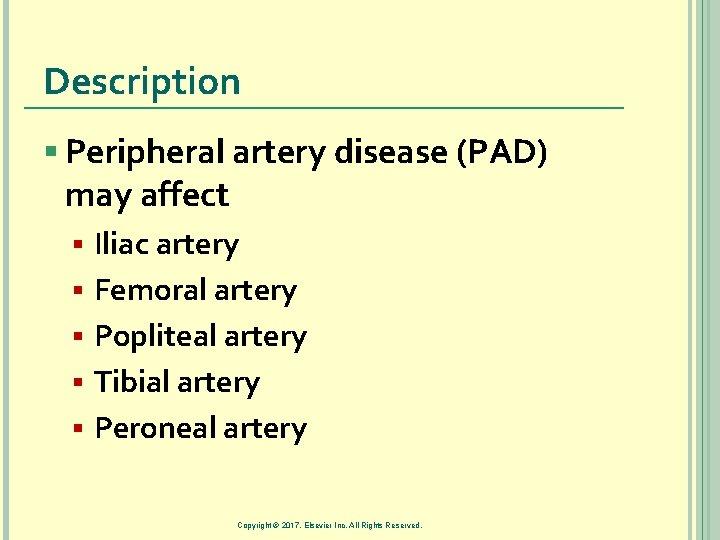 Description § Peripheral artery disease (PAD) may affect § § § Iliac artery Femoral