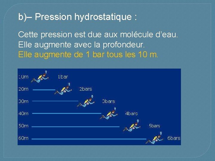 b)– Pression hydrostatique : Cette pression est due aux molécule d'eau. Elle augmente avec
