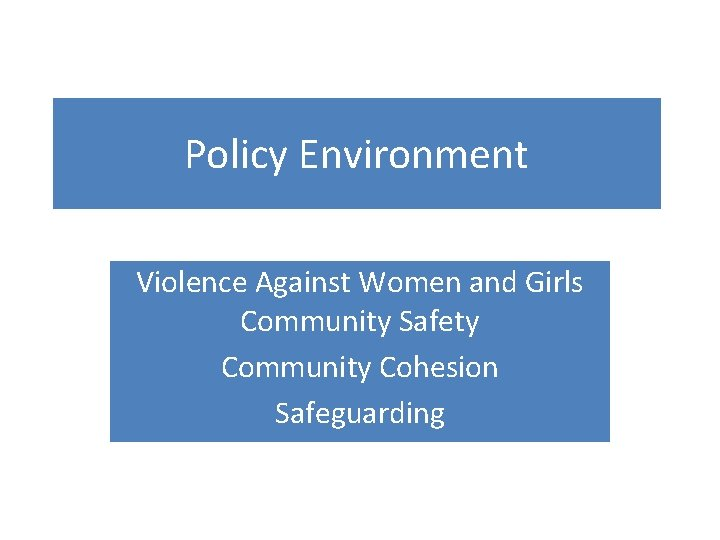 Policy Environment Violence Against Women and Girls Community Safety Community Cohesion Safeguarding