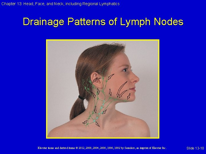 Chapter 13: Head, Face, and Neck, including Regional Lymphatics Drainage Patterns of Lymph Nodes