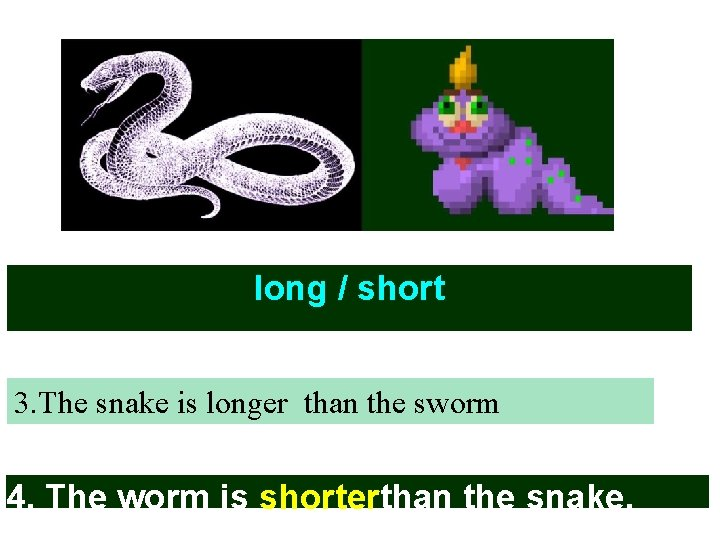 long / short 3. The snake is longer than the sworm 4. The worm