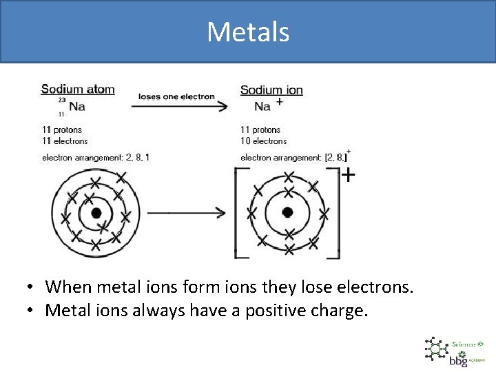 Metals • When metal ions form ions they lose electrons. • Metal ions always